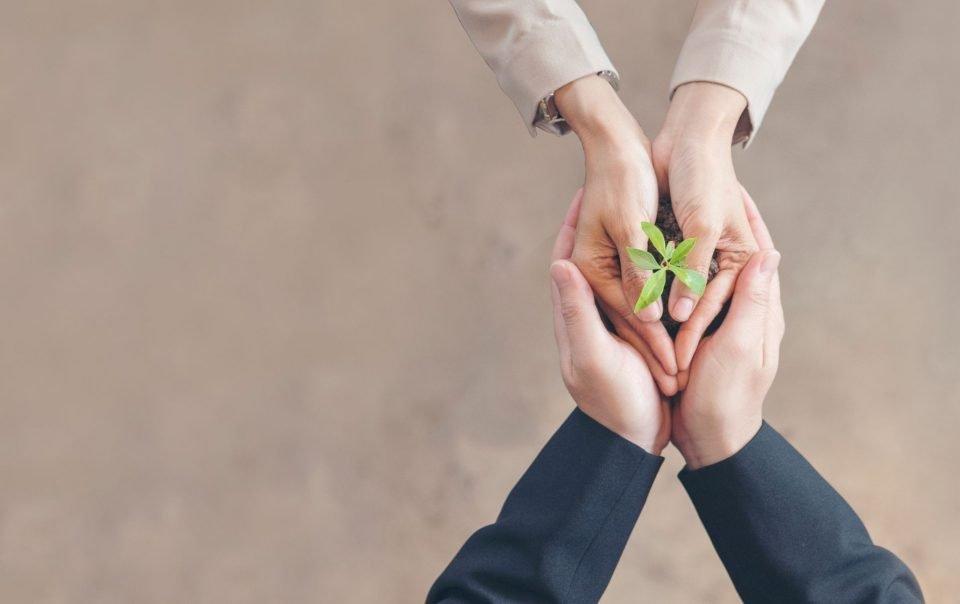 competenze-green-piu-richieste-in-futuro